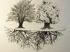 Vitárius Nikoletta:  A fák titkos élete