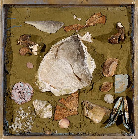 Vízparti relikviák